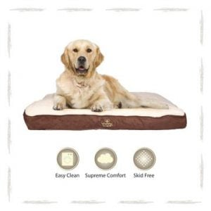 Roxy Lounger