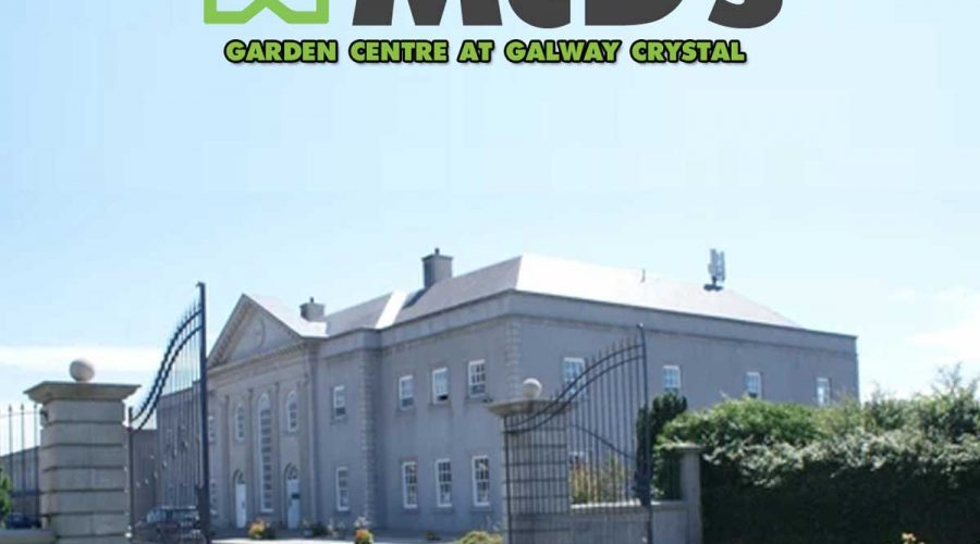 Galway's Newest Garden Centre Has Arrived at McD's in Galway Crystal.