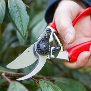 Expert Rotate Handle Pruner -Darlac