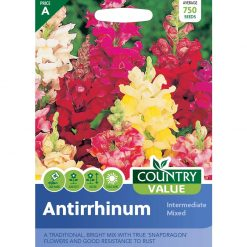 Antirrhinum Intermediate Mixed| Flower Seeds| Nationwide Delivery