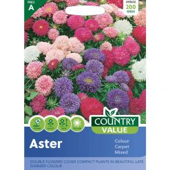 Aster Colour Carpet Mixed| Flower Seeds| Nationwide Delivery