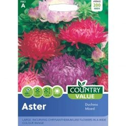Aster Duchess Mixed| Flower Seeds| Nationwide Delivery
