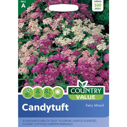 Candytuft Fairy Mixed| Flower Seeds| Nationwide Delivery