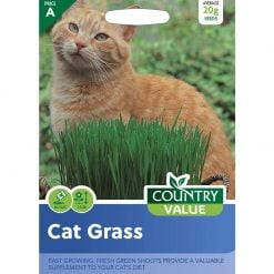 Cat Grass| Flower Seeds| Nationwide Delivery