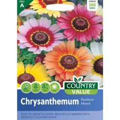 Chrysanthemum Rainbow Mixed| Flower Seeds| Nationwide Delivery