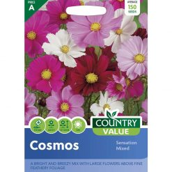 Cosmos Sensation Mixed| Flower Seeds| Nationwide Delivery