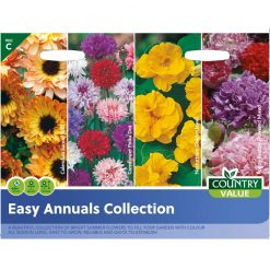 Easy Annuals Collection| Flower Seeds| Nationwide Delivery