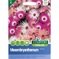 Mesembryanthemum Mixed| Flower Seeds| Nationwide Delivery