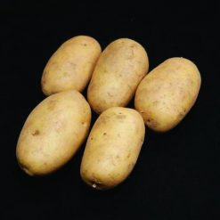 Pentland Dell Maincrop 2kg| Seed Potatoes | Nationwide Delivery
