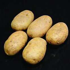 Wilja Second Earlies 2Kg| Seed Potatoes | Nationwide Delivery