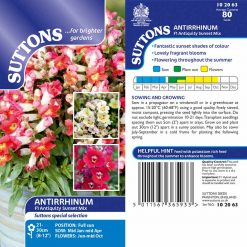 Antirrhinum Seeds - Antiquity Sunset Mix by Suttons Seeds| 102063| Nationwide Delivery On Flower Seeds