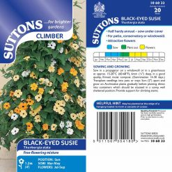 Black-Eyed Susie Seeds by Suttons Seeds| 106033| Nationwide Delivery On Flower Seeds