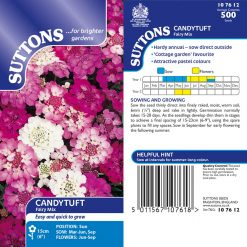 Candytuft Seeds - Fairy Mix by Suttons Seeds| 107612| Nationwide Delivery On Flower Seeds