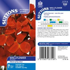 Wallflower Seeds - Fire King by Suttons Seeds| 137516| Nationwide Delivery On Flower Seeds