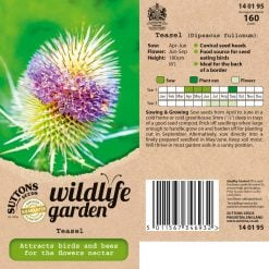 Teasel Seeds by Suttons Seeds| 140195| Nationwide Delivery On Flower Seeds