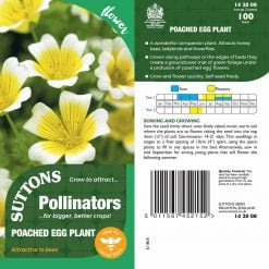 Poached Egg Plant Seeds by Suttons Seeds  142008  Nationwide Delivery On Flower Seeds