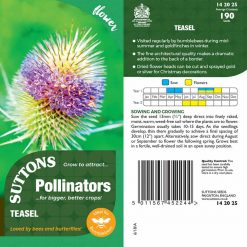 Seeds For Pollinators - Teasel Seeds by Suttons Seeds| 142025| Nationwide Delivery On Flower Seeds