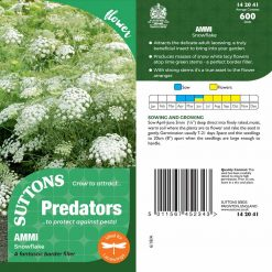 Ammi Majus Seeds - Snowflake by Suttons Seeds| 142041| Nationwide Delivery On Flower Seeds