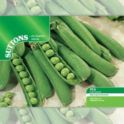 Pea Early Onward by Suttons Seeds  190005  Nationwide Delivery