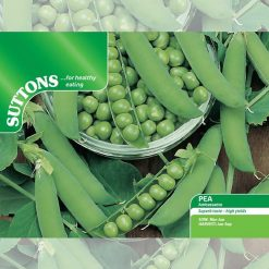 Pea Ambassador by Suttons Seeds  190013  Nationwide Delivery